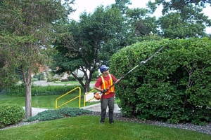 Lawn mowing landscape maintenance lawn care irrigation for